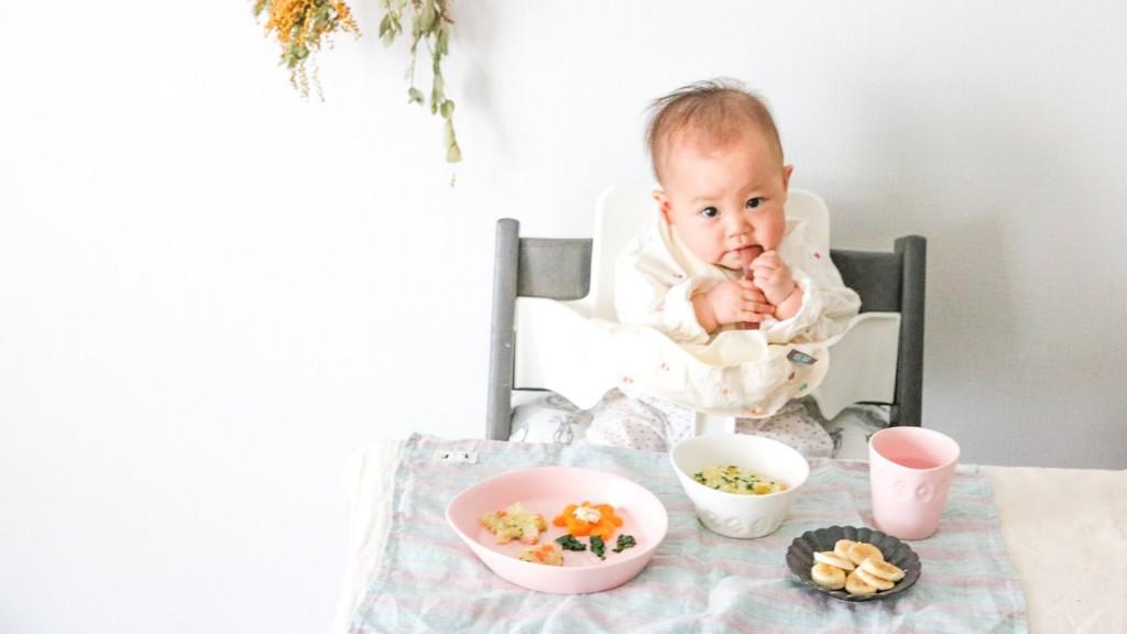babyfoodtips3